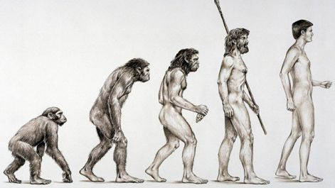 basics-of-evolution-theory.jpg